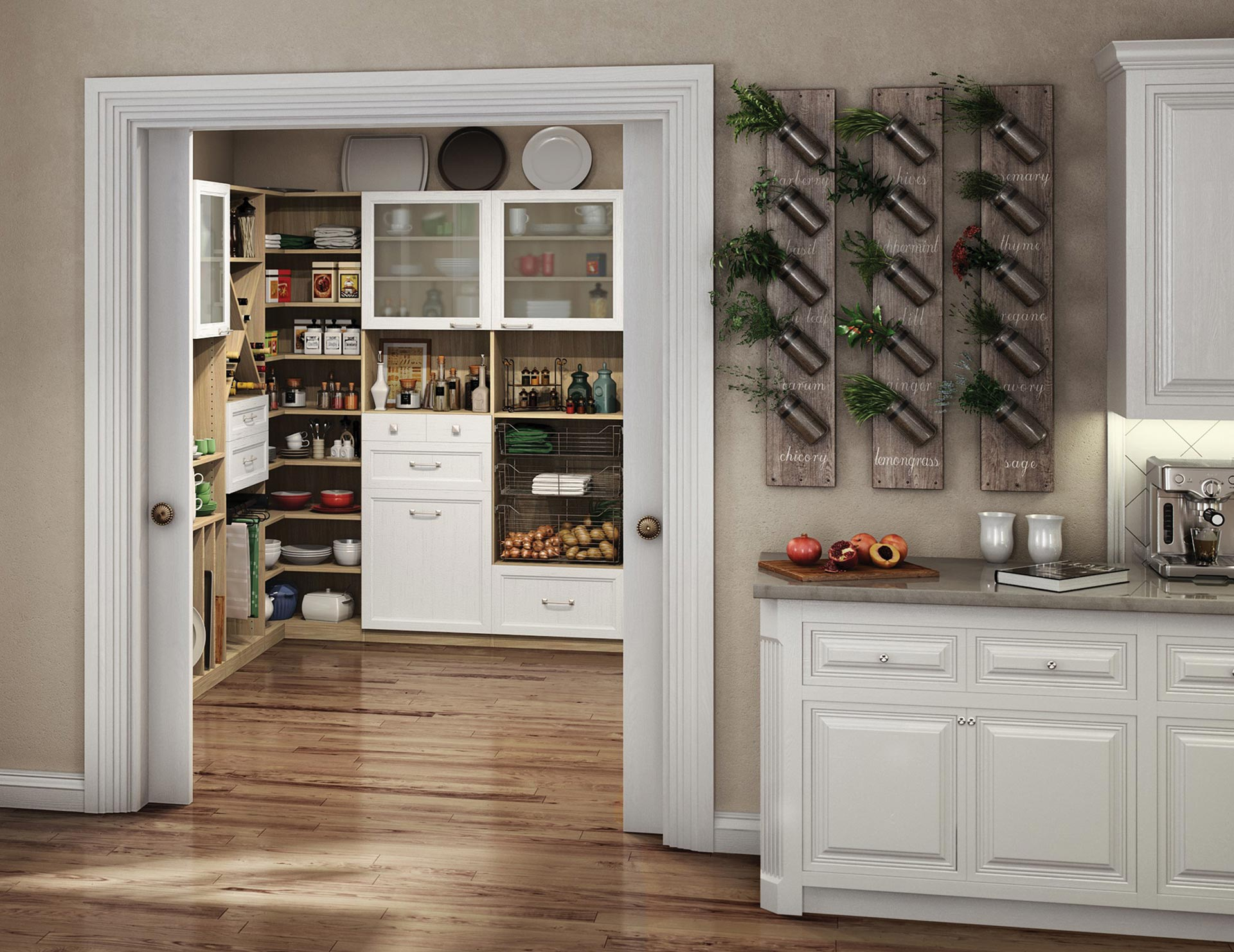 Kitchen Pantry Cabinets Kitchen Organization Ideas