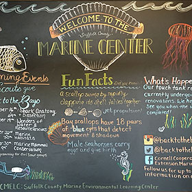 Long Island Marine Environmental Learning Center Welcome Board