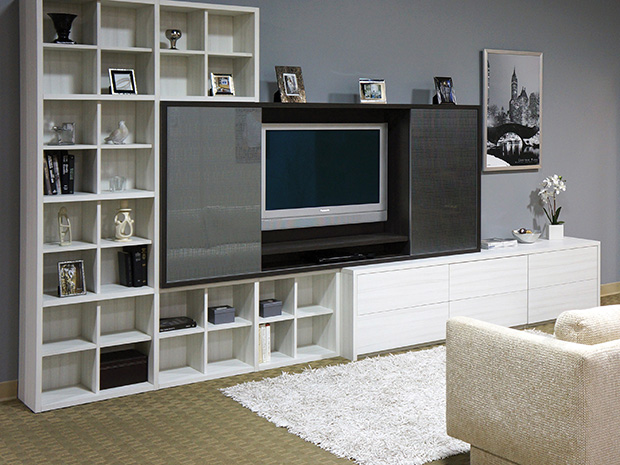California Closets Ft. Worth - Entertainment Center and Storage System