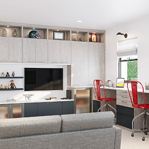 Living Area Wall Units | Custom Living Room Storage | California Closets
