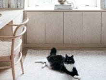Cat Enjoying Custom Office | California Closets